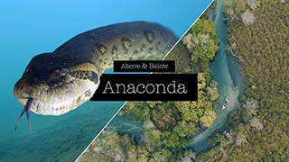 AboveBelowAnaconda